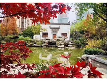 长江国际泓园